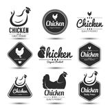Chicken label. Labels and badges set of chicken meat and eggs,vector illustration Royalty Free Stock Photo