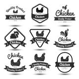 Chicken label 4. Labels and badges set of chicken meat and eggs,vector illustration Stock Images