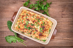 Chicken lasagna and white cheese . Royalty Free Stock Photos