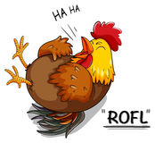 Chicken laughing on white Royalty Free Stock Photo