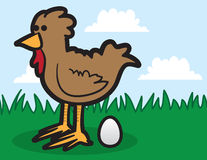 Chicken Laying Egg. Cartoon chicken in the grass laying egg Royalty Free Stock Photo