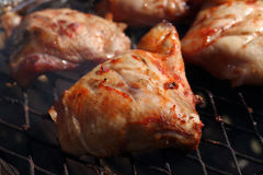 Chicken led grilled Royalty Free Stock Photography