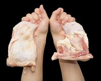 Chicken leg in hand on a black background.  Royalty Free Stock Image