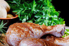 Chicken leg seasoned with paprika and parsley Royalty Free Stock Images