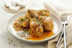 Chicken legs braised in curry and coconut sauce stock photography