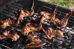 Chicken legs on the grill Stock Photos