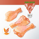 Chicken legs vector Stock Photography