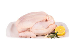 Chicken with lemon and herbs Royalty Free Stock Photos
