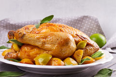 Chicken with Lemon, Lime and Potato Garnished with Sage. Stock Photo