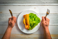Chicken and lettuce Royalty Free Stock Image