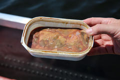 Chicken Liver Stock Photo