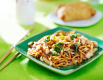 Chicken lo mein chinese food Royalty Free Stock Photos