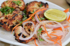 Chicken Malai Tikka Royalty Free Stock Photos