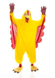 Chicken Man Hands Up Royalty Free Stock Image