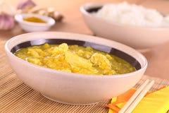Chicken-Mango Curry Stock Image