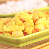 Chicken and Mango Curry Dish Royalty Free Stock Image