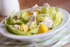 Chicken and mango salad Royalty Free Stock Image