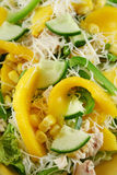 Chicken And Mango Salad 3 Royalty Free Stock Images