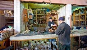 Chicken market in marrakech stock photos