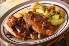 Chicken marsala is an Italian-American dish made from chicken cu Royalty Free Stock Photo