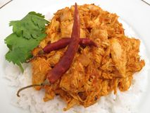 Chicken Masala Dinner Royalty Free Stock Photos