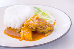 Chicken massaman curry with  rice Royalty Free Stock Image