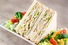 Chicken and mayonnaise sandwich slices. Stock Photography