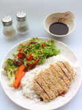 Chicken meal. Rice vegetable fried chicken breasts White background Royalty Free Stock Images