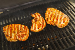 Chicken meat. On a grill Stock Photo