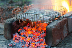 Chicken meat baked in the fire on the grill grate Stock Photography
