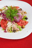 Chicken meat filet salad Stock Images