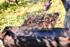 Chicken meat fried on a barbecue grill. Royalty Free Stock Photography