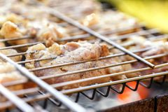 Chicken meat fried on a barbecue grill. Royalty Free Stock Images