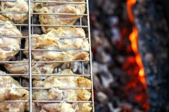 Chicken meat fried on a barbecue grill. Stock Images
