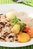 Chicken meat with mixed rice and vegetables Royalty Free Stock Photo