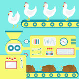 Chicken meat production Royalty Free Stock Photos