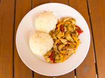 Chicken meat with rice Royalty Free Stock Photos