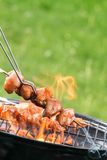 Chicken meat skewer on grill Stock Photo
