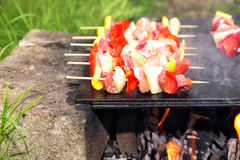 Chicken meat skewers barbecue Stock Images