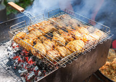Chicken meat slices in sauce on fire Stock Image