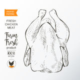 Chicken meat vector Royalty Free Stock Images