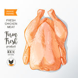 Chicken meat vector Royalty Free Stock Photo