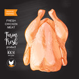 Chicken meat vector Stock Photography