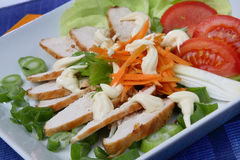 Chicken meat with vegetable. On plate Stock Image