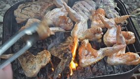 Chicken meat wings that turn over on a barbecue grill.Meat is fried in Mangal Barbecue grill. Chicken meat on the grill. During a picnic stock footage