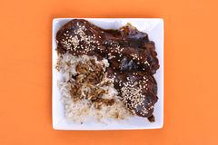 Chicken mole Stock Images