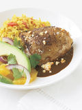 Chicken mole and yellow rice Stock Image