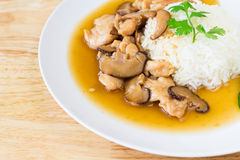Chicken and mushroom with sauce over rice Stock Photo