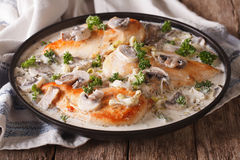 Chicken with mushrooms and leek in a creamy sauce close-up Royalty Free Stock Images