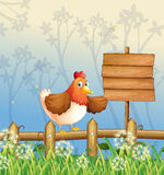 A chicken near a signboard at the woods Royalty Free Stock Images